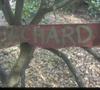 Orchardpic_1_2